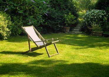 Restoring your lawn in spring